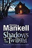 Shadows in the Twilight (Joel Gustafson Stories Book 2)
