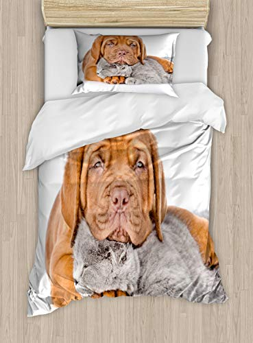 Bordeaux Comforter Set - Ambesonne Dog and Cat Duvet Cover Set, Sad Bordeaux's Head on a Sleeping Kitten, Decorative 2 Piece Bedding Set with 1 Pillow Sham, Twin Size, Persian Orange Pale Taupe and Pale Mauve Taupe