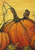 Toland Home Garden 1012224 Pumpkin Portrait 28 x 40 inch Decorative, Fall Autumn Harvest, House Flag