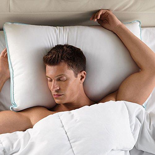 BioSense Classic Memory Foam Pillow with Better Than Down Cover Standard//Queen