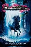 Phantom Stallion - Wild Horse Island, Terri Farley, 0060815434