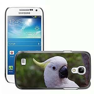 Cas Coq Case Cover // M00148175 Loro de Cockatoo Pájaro Plumaje // Samsung Galaxy S4 Mini i9190