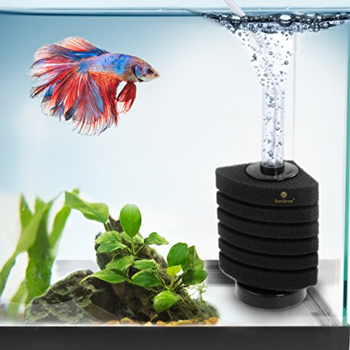 Undergravel Filter Set Up (6-Layer Betta Corner Filter --- Provides Biological and Chemical Filtration - Easy to setup, just connect to Air pump - Promotes Colonization of Nitrifying Bacteria - Ideal for Small Fish Tanks)