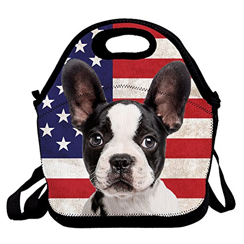 Boston Terrier Dog Print Insulated Lunch Bag for Women Men Kids with zipper and Strap, Hot / Cooler Multi-purpose Work / Picnic - Hot Women Boston