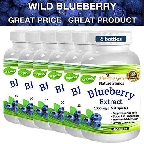 6 Wild Blueberry Extract - Made from Organic Berries - Powerful Antioxidant - GMO and Gluten Free - 1000 mg Per Serving (1 Capsule) - 360 Capsules (6-12 Months) - Supports Good Vision, Memory & Brain