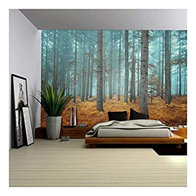 Delightful Picture, Beautiful Dreamlike Forest in Autumn Time Wall Mural, Created Just For You