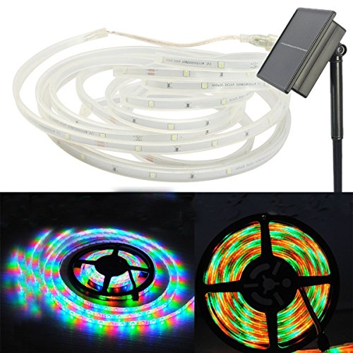 Outdoor Led Disco Lights in Florida - 9