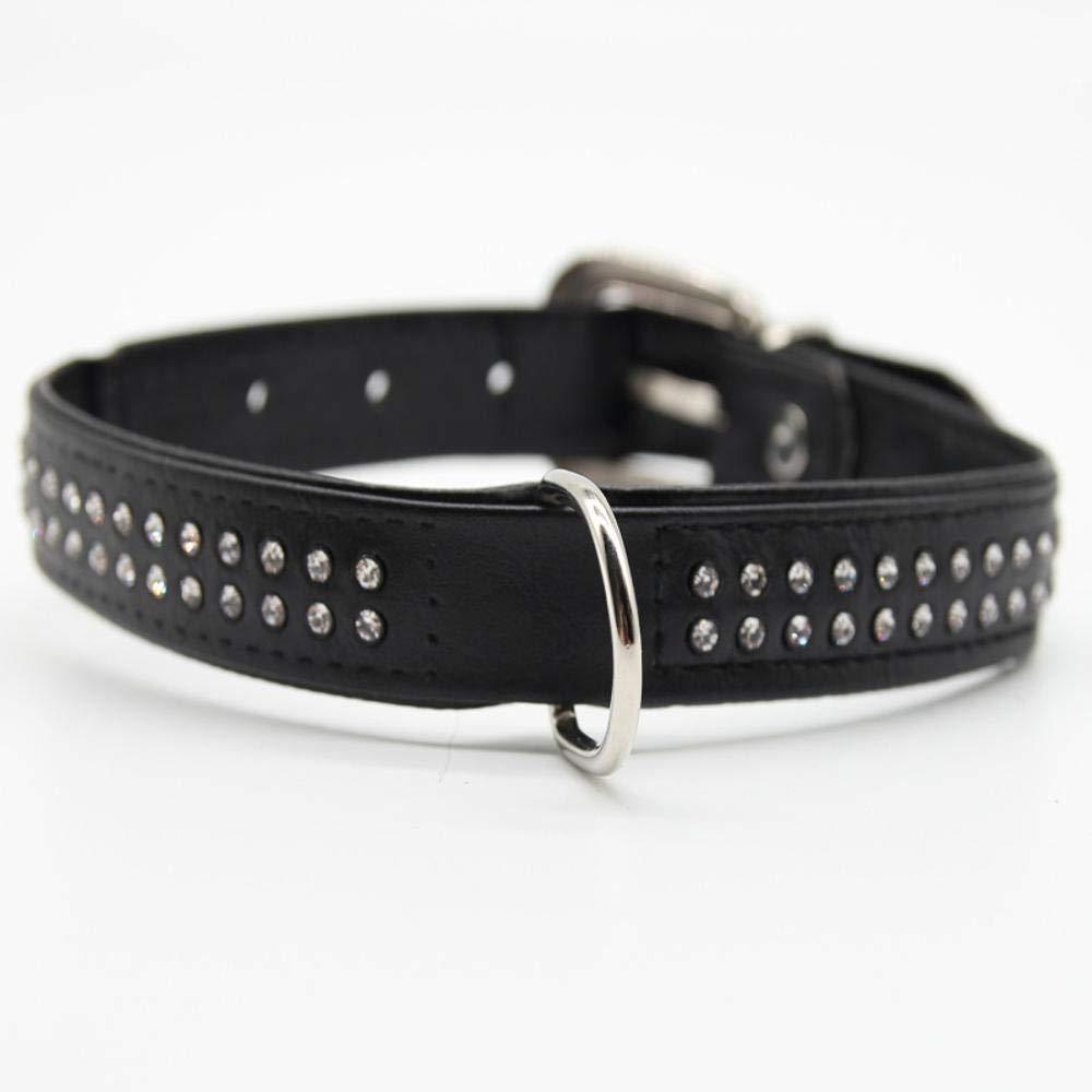 Dixinla Collar de Perro PU Punto Taladro Doble Capa el Collar Anillo Cadena de Perro: Amazon.es: Productos para mascotas