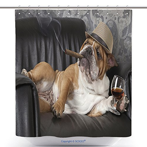 Mildew Resistant Shower Curtains Humorous Photograph Of English Bulldog Resting In A Black Leather Chair With A Cigar And Glass Of 386992378 Polyester Bathroom Shower Curtain Set With Hooks