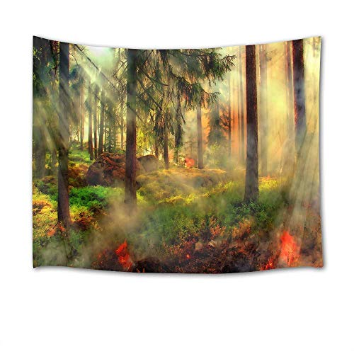 sdgfsag Jungle Tapestry Trees Tapestry Wall Hanging Plants with Fog inest Scenery Wall Blankets 60Wx51H inch Digital Printing Unique Home Decoration