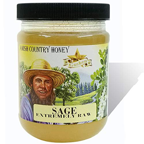 Goshen Honey Amish Extremely Raw SAGE BLOSSOM Honey - 100% Natural Organic Domestic Honey with Health Benefits - Unfiltered Unprocessed Unheated - OU Kosher Certified | 1 Lb Plastic Jar