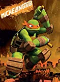 Edge Home Products Teenage Mutant Ninja Turtles Canvas Wall Art, 10 by 13.5-Inch, Michelangelo Picture