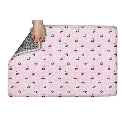 Indoor Door Mat with Non Slip Backing, Wild Cherry red Fruit Pink Color Easy Clean Outdoor Doormats,Waterproof Low Profile Modern Aqua Runners Area Rug,24x16 in