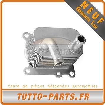 Radiador Enfriador de aceite Ford Fiesta Focus Transit: Amazon.es: Coche y moto
