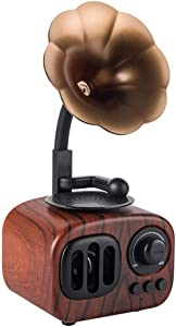 Longpro Small Portable Bluetooth Speaker Retro Vintage Phonograph Shape Home Decor, Built in Mic, TF Card Slot Wooden Wireless Speaker