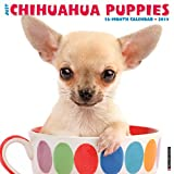 Just Chihuahua Puppies 2017 Wall Calendar (Dog Breed Calendars)