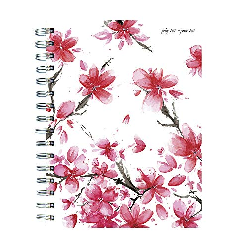TF Publishing 19-9225A July 2018 - June 2019 Cherry Blossoms Medium Weekly Monthly Planner, 6.5 x 8