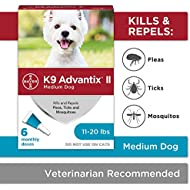 K9 Advantix II Flea And Tick Prevention for Dogs, Dog Flea And Tick Treatment for Medium Dogs 11-20 lbs, 6 Monthly Applications