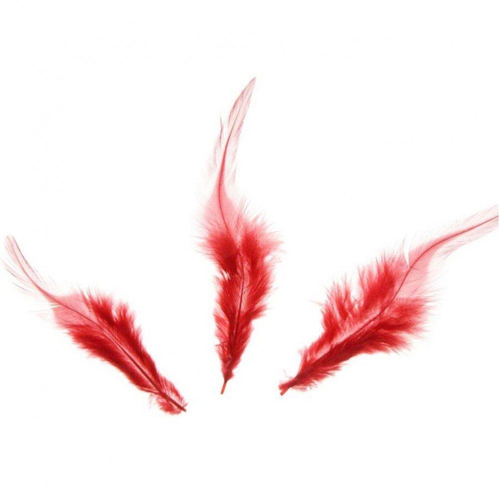 Pr/ésentoirs pour Bijoux Accessoires cr/éation Plume dautruche color/ée GM 20 pi/èces Rouge