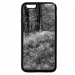 iPhone 6S Plus Case, iPhone 6 Plus Case (Black & White) - Spring in the Forest
