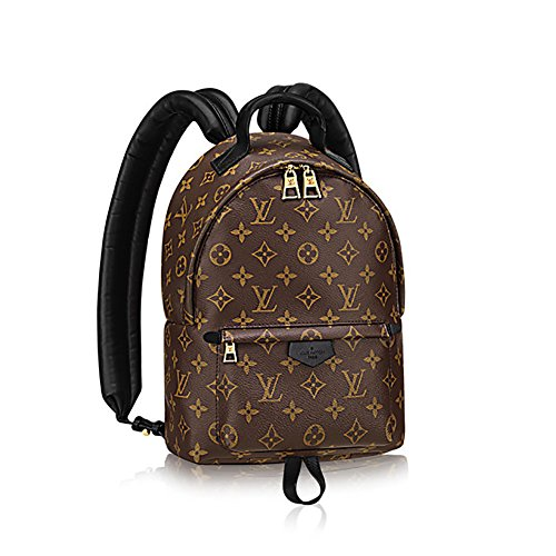 Louis Vuitton Backpack Handbag