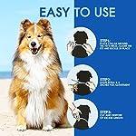 PROZADALAN-Collare-Antipulci-Cane-8-Mesi-Prevenzione-Pulci-e-Zecche-con-Estratti-di-Oli-Essenziali-Ipoallergenico-Taglia-Unica-per-Tutti-i-Cani-70cm