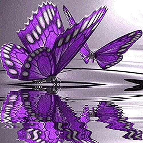 (5D DIY Diamond Painting Rhinestone Pictures of Crystals Embroidery Kits Arts, Crafts & Sewing Cross Stitch Home Decor Craft (Butterfly))