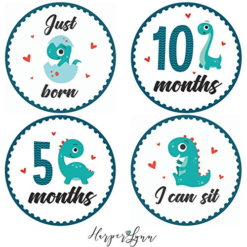 Baby Monthly Milestone Onesie Stickers by Harperlynn (16 Stickers - Dinosaur) - Newborn Photo Prop for Pictures - Great Gift for Parents of Happy Infant Boy or Girl - 4