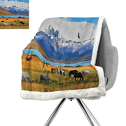 Mountain Horse Diamond Fleece - Scenery Decor Berber Fleece Blanket,Animal Farm with Horses in The Vast Combe with Mountains Desert Art Photo,Multicolor,Lightweight Thermal Blankets W59xL31.5 Inch