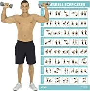 Vive Dumbbell Exercise Poster - Home Gym Workout for Upper, Lower, Full Body - Laminated Bodyweight Chart for