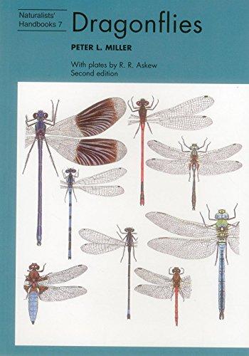Dragonflies (Naturalists