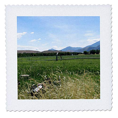 3dRose Jos Fauxtographee- Meadowland - A Green Lush Meadow with a Sprinkler on a Farm - 10x10 inch Quilt Square (qs_290414_1) ()