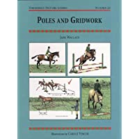 Poles and Gridwork (Threshold Picture Guide)