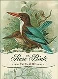 On Rare Birds, Anita Albus, 0762769874