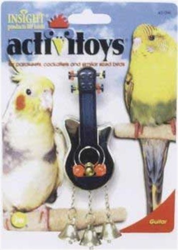 51nf6kn%2BvlL - JW Pet Company Activitoys Guitar Bird Toy