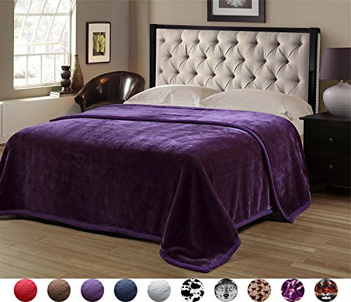 Superior Thick Warm Raschel Blanket,Double Layer Reversible Cozy,Silky,Fleece,Medium weighted Plush Blanket,Queen Size 79x87 inches,Purple Solid Color,Hypoallergenic,Fade resistant(PPL) (Plush Queen Raschel Blanket)