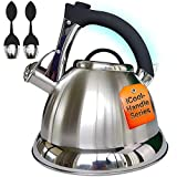 Pykal Whistling Tea Kettle with iCool - Handle, Surgical Stainless...