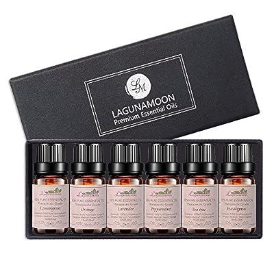Aromatherapy Essential Oils Gift Set, Top 6 Premium Therapeutic Grade Oils -Lavender, Tea Tree, Eucalyptus, Lemongrass, Orange, Peppermint Essential Oils