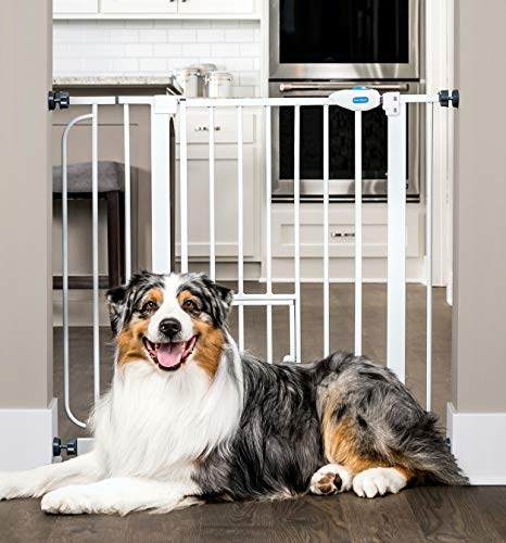 Carlson Extra Wide Walk Through Pet Gate with Small Pet Door, Includes 4-Inch Extension Kit, Pressure Mount Kit and Wall Mount ()