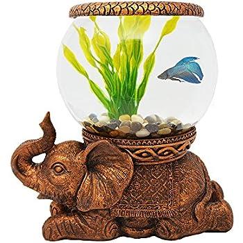 Amazon Com Tetra 29008 Waterfall Globe Aquarium Betta