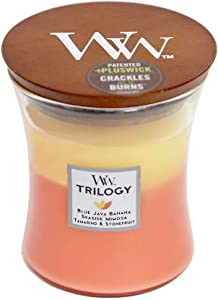 WoodWick Trilogy Tropical Sunrise - Blue Java Banana, Seaside Mimosa, Tamarind and Stonefruit Scented Crackling Wooden Wick Hourglass Candle in Clear Glass Jar, Medium - 9.7 Oz