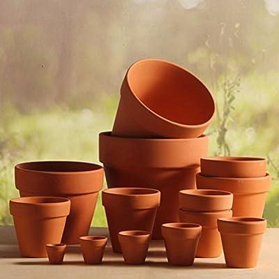 BESTOMZ 10 Pcs Mini Clay Pots 1.2'' Terracotta Pot Clay Ceramic Pottery Planter Cactus Flower Pots Succulent Nursery Pots- Great for Plants,Crafts,Wedding Favor: Garden & Outdoor