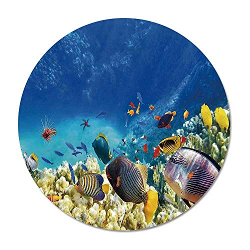 - Ocean Decor Round Door Mat 23.6 Inches,Fairy Underwater with Fish and Source of Oxygen Coral Aquatic Liquid Culture Scenery for Living Room Bedroom,23.6''Round