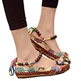 Susanny Women's Sweet Boho Style Loafers Beaded Strappy Cloth Embroidered Flower Apricot Flats Dress Shoes 7.5 B (M) US