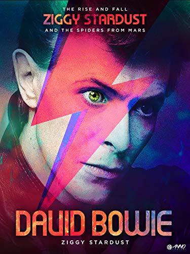 (David Bowie: Ziggy Stardust )