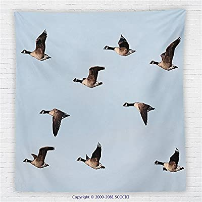 59 x 59 Inches Geese Decor Fleece Throw Blanket Canada Goose (Branta Canadensis) in Flight Clear Sky Traveling Feather Picture Blanket