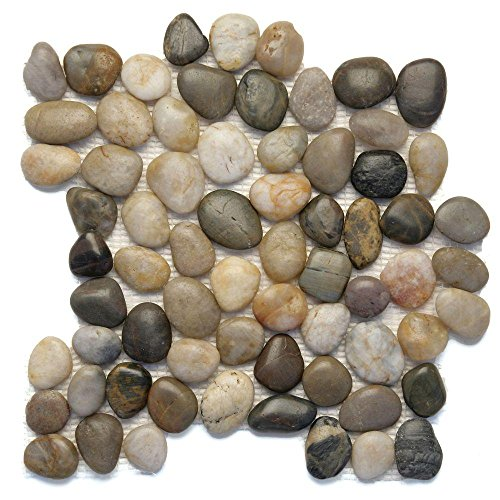 Decorative Random Sized Pebble Polished Mosaic in ()