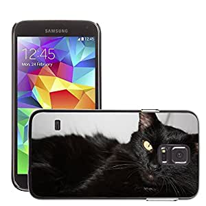 Hot Style Cell Phone PC Hard Case Cover // M00111350 Cat Black Cat Cat'S Eyes // Samsung Galaxy S5 S V SV i9600 (Not Fits S5 ACTIVE)