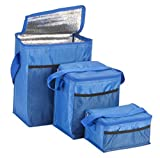 Insulated Cooler Bags, Set of 3