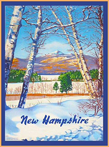 New Hampshire Snowy Birch Trees Vintage United States of Amerca Travel Advertisement Art Poster Print. Poster measures 10 x 13.5 inches - New Hampshire State Tree